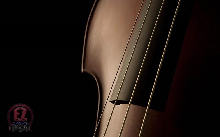 همه چیز درباره کنترباس (Double bass)