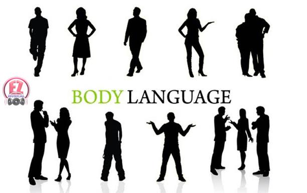 استفاده از زبان بدن در کسب و کار با دوازده تکنیک فوقالعاده